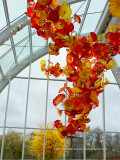 Chihuly House of Glass Interiors-10-2.jpg