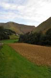8-Basque Farm-3.jpg