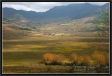 The Valley of Phobjika.