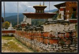 On the Way to Kurje Monastery (Bhumtang District).