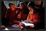 Novices Studying. Kyaung Shwe Yaunghwe. Nyaungshwe.