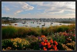 Ploumanac'h - The harbour.