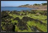 Sud-Finistère. Raguenez.