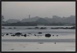 A Misty Shore.