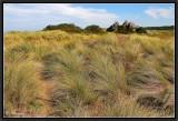 The Wind on the Dunes of Keremma.