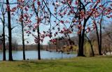 Spring 2013 in Queens 011.jpg