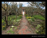 Croft Castle Walled Gardens #28