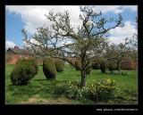 Croft Castle Walled Gardens #30