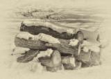 Hardcore timber