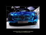 Mondial de l'Automobile Paris 2012 - 15