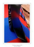 Concept Cars Paris 2013 - 13
