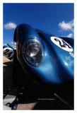 AC Cobra Daytona Coupe 1963, Dijon 2008
