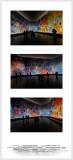 Musee d'Art Moderne Paris - Salle Dufy