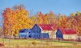 Autumn Barns 20121018