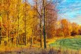 Autumn Landscape At Sunrise 29955