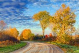 Autumn Back Road 29802-3