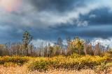 Autumn Landscape 29692