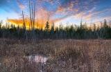 Marsh At Sunrise 31170-2