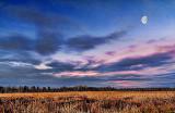 Moon At Sunrise 20121203