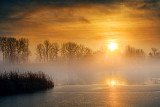 Foggy Rideau Canal Sunrise 31817