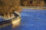 Freezing Rideau Canal 31916