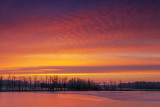 Irish Creek Sunrise 32034