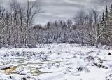 Winter Marsh 32423-4