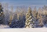 Snowscape 32500