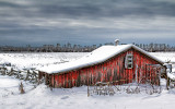 Little Red Shed 32428