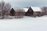 Snowy Old Log Barns 32688