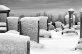 Winter Graveyard 32422