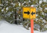 This Way. No, That Way 33219