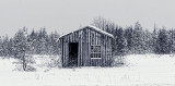 Winter Shed 33228-9