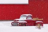 Snowy Old Ford F-47 Pickup Truck 20130225