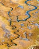Wetlands 29718