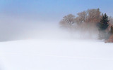 Fog On The Canal 33800-1