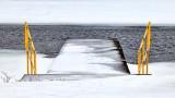 Thawing Dock 20130227