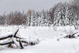 Snowscape 33927-8