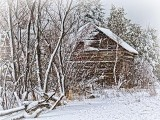 Snowy Old Log Barn 33923