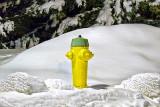 Winter Hydrant 20130303