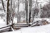 Snowscape 33925