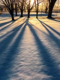 Sunrise Shadows 20130320
