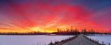 Roses Bridge Sunrise 20130325