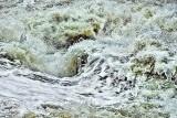 Troubled Waters DSCF01177