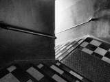 Shark & Bull Stairwell 20130428