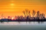 Sunrise Ground Fog 20130501