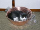 La bassine à confiture...