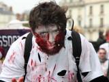 Carnaval de Blois 2013
