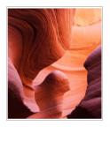 *Desert Sphinx*