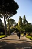 Vatican City D700_07056 copy.jpg
